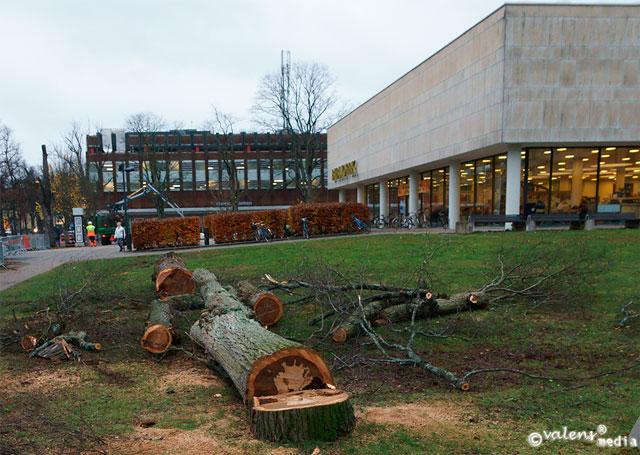 Växjö - Stadsbibliotek, 2013-10-31