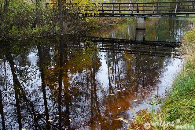 Någonstans i Kronobergs län, 2012-10-21
